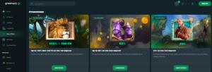 greenspin_bonuses